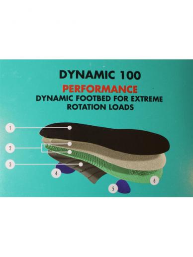 Dynamic 100 2